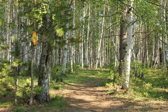 Baikal_15_02800
